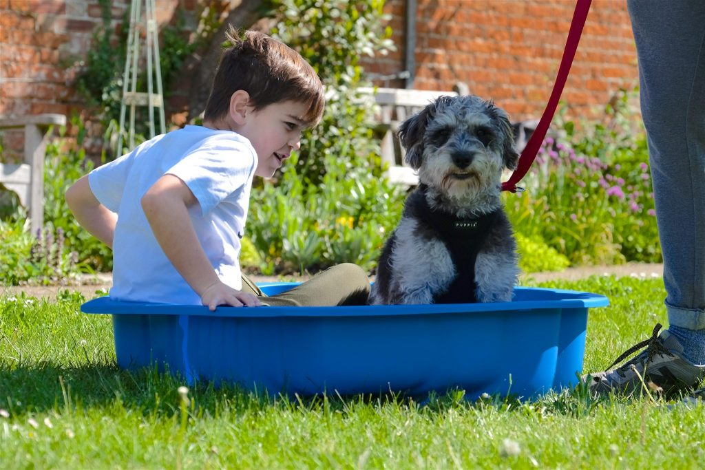 dog and kid in blue tub in class