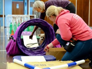dog going through tunnel and confidence boosting balance path in workshop