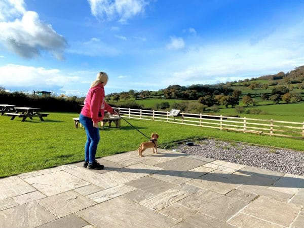 cathy and rocket puppy on lead in devon countryside