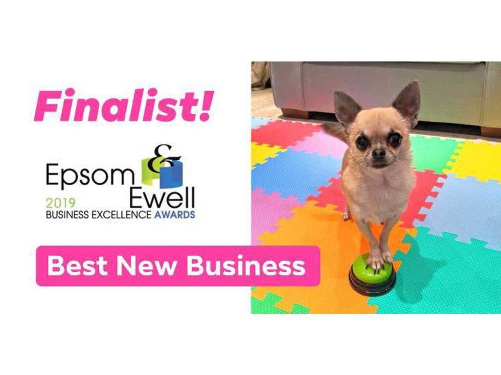 horton dogs finalist best new business epsom business awards 2019 1