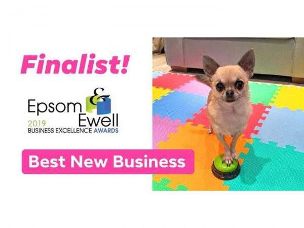 horton dogs finalist best new business epsom business awards 2019 1
