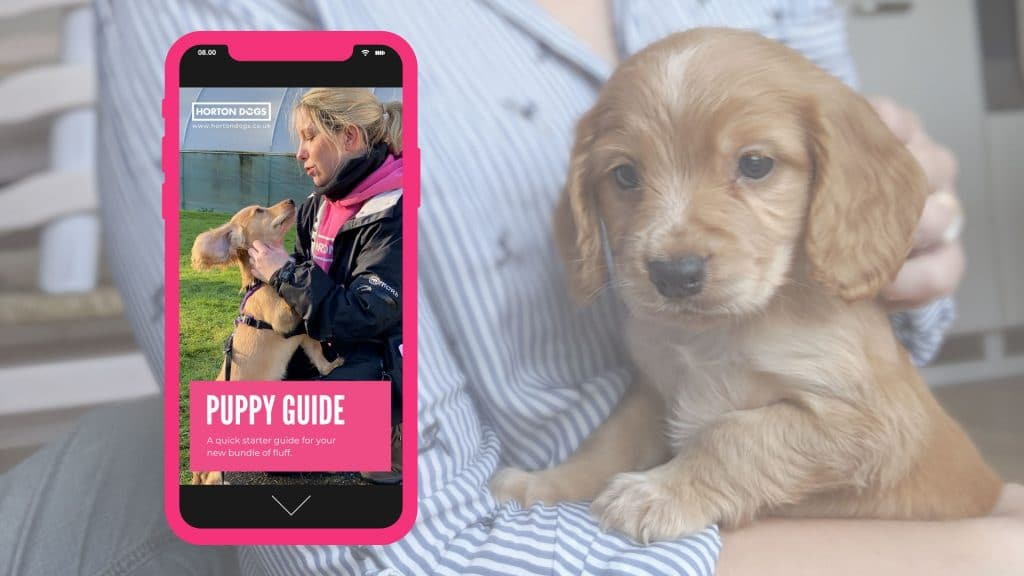 horton dogs puppy guide cover