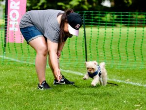 student and puppy in dog training class in ewell epsom surrey