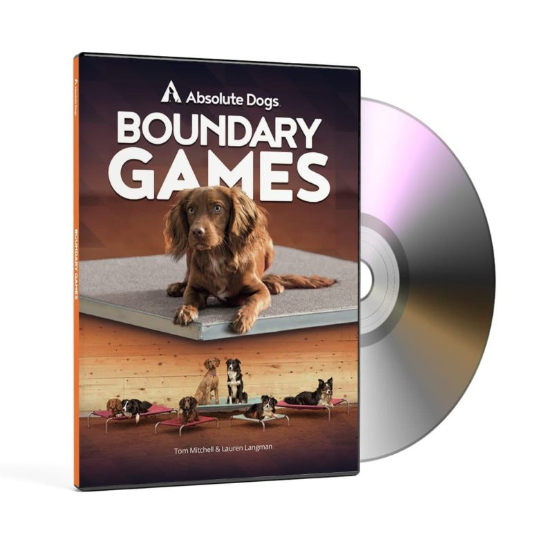 absolute dogs boundary games dvd 2048x2048 1
