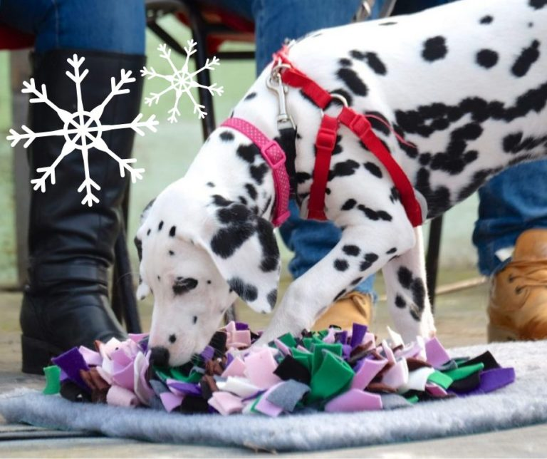 christmas gift ideas for dogs with snuffle mats