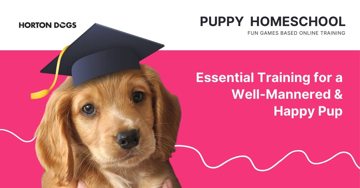 Horton Dogs Puppy Home School cover